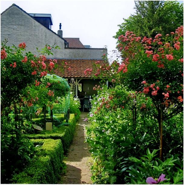 tuin met zicht op huis