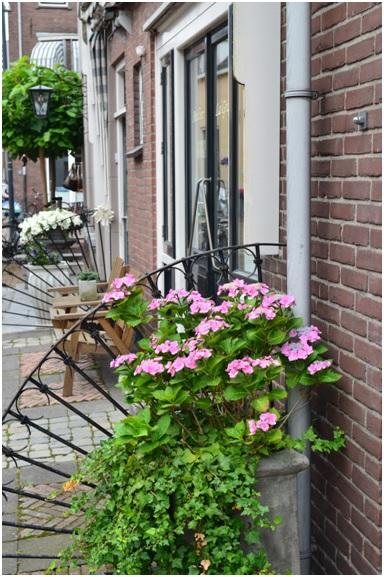 ruiterstraat 1 zomerr
