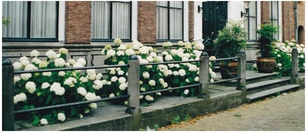 stoep-ruiterstraat-10