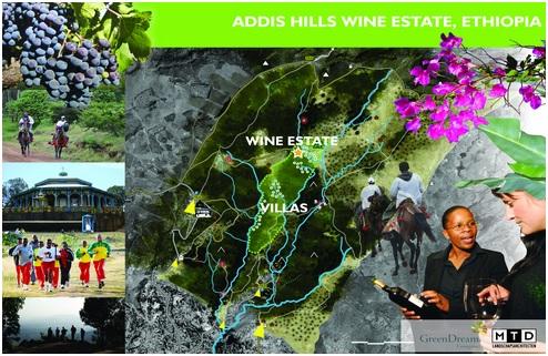 addis hills wines